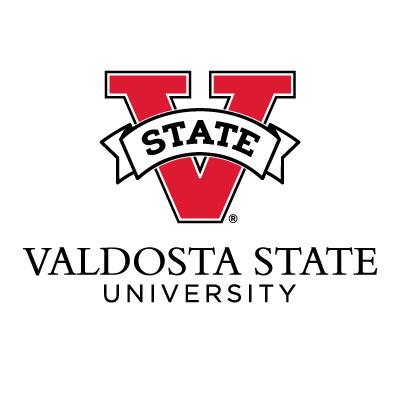 Valdosta State University (VSU) – Strategy, Messaging & Media Planning